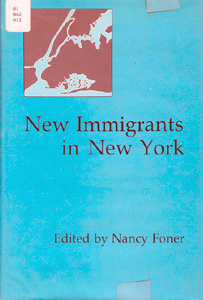 ethnicity and the immigrant experience 2 essay Political science, immigration, identity, ethnic - assimilation into the united states.